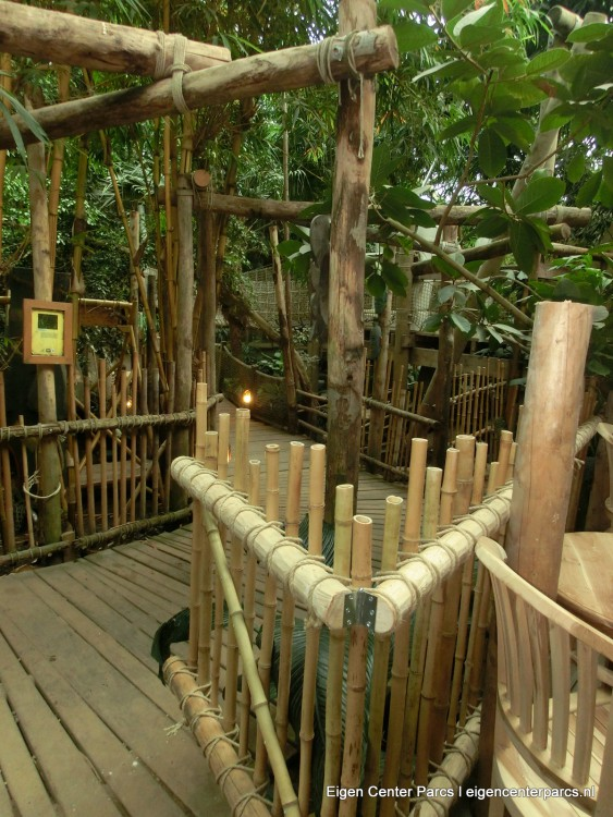 Spot je cottage jungle lodge 63 atlas butterfly eigen center parcs - Kamers kindermeubilair ...