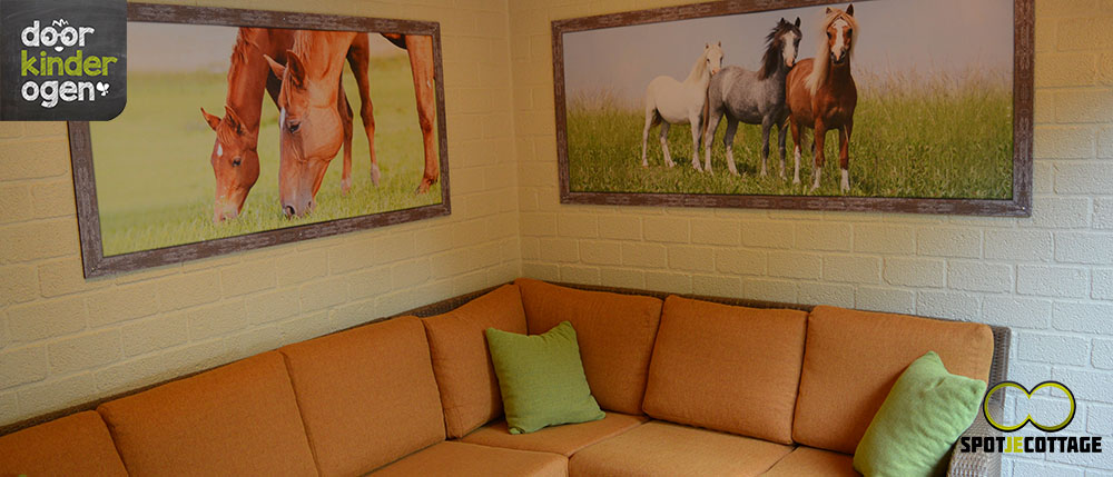 premium pony cottage erperheide 2015
